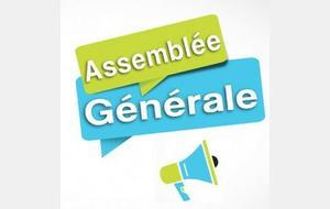Assemblée générale de l'année civile 2020 : Jeudi 10 juin 2021 à 19h00